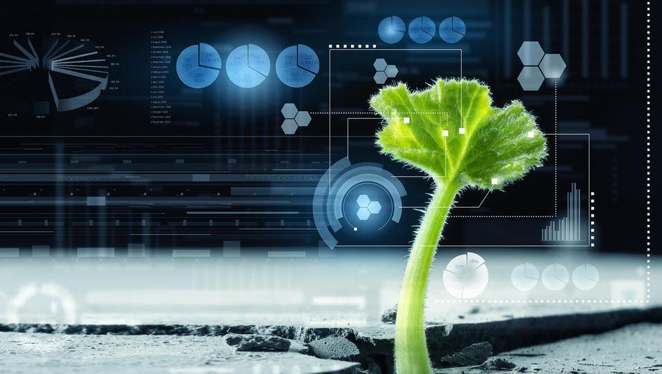 Kako tehnologija kmetom zniža stroške in hkrati poveča prirast?