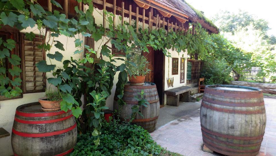 Turistična kmetija Erniša privablja goste z vinom in domačo hrano