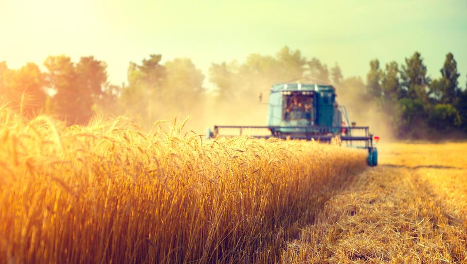 Evropska komisija predlaga povečanje največjega zneska državne pomoči v kmetijstvu