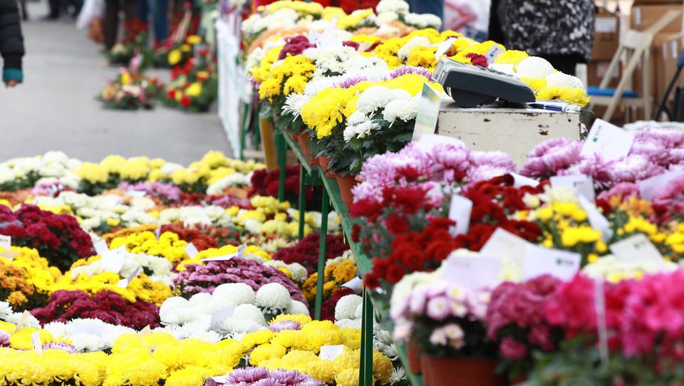 Cvetličarji, vrtnarji, svečarji in vulkanizerji, pozor, prihajajo inšpektorji