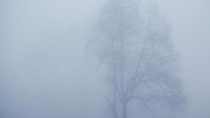 V Londonu zaradi smoga alarm najvišje stopnje. Opozorila tudi pri nas.