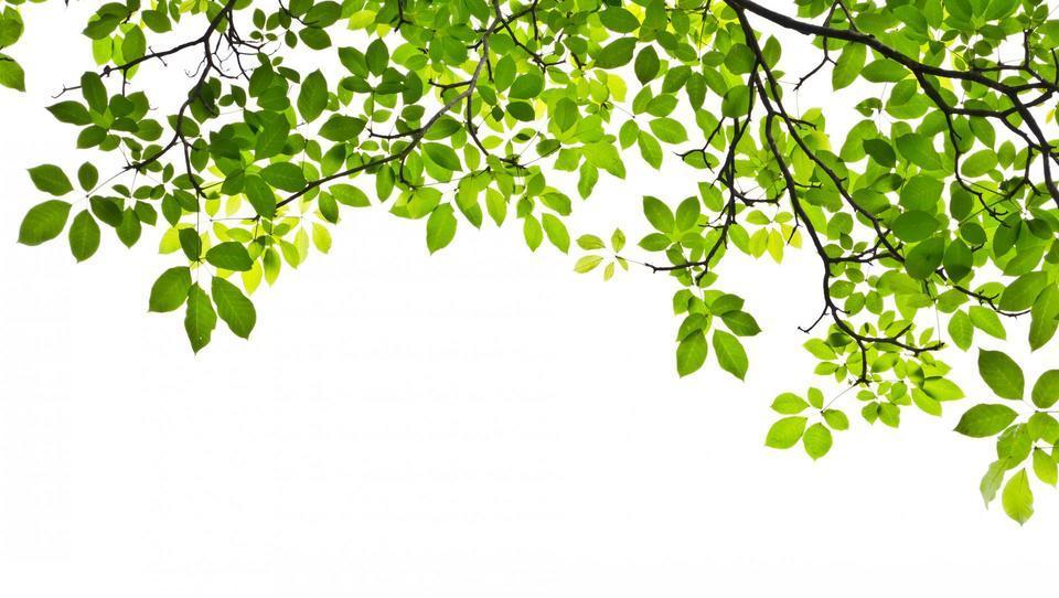 Ko pomladni veter sprosti zakrčenost telesa...