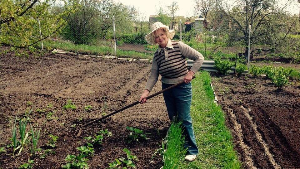 V kmetijstvo se vrača motika