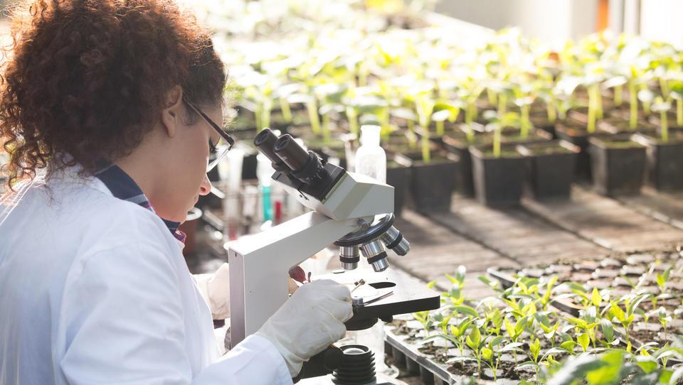 Kmetijske znanosti v Sloveniji na pragu odličnosti