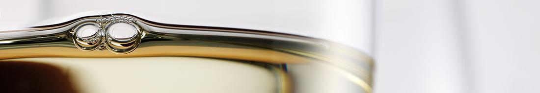 katalog vin